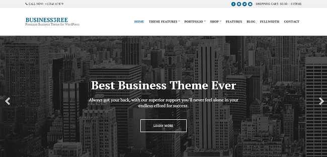 Business3ree : Responsive Business WordPress Theme
