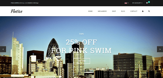 Flatize : Template WordPress eCommerce