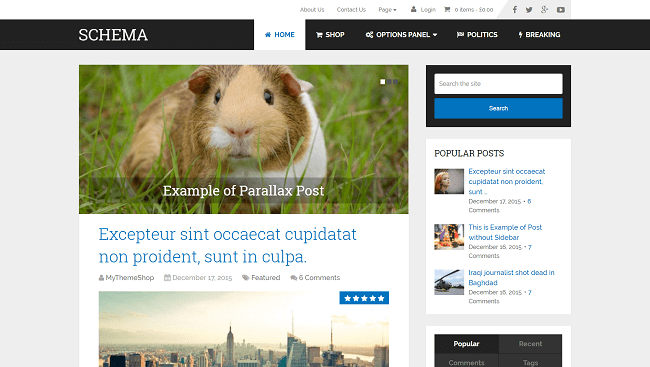 Schema - theme wordpress blog optimisé pour le seo