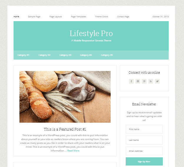 lifestyle pro - theme wordpress