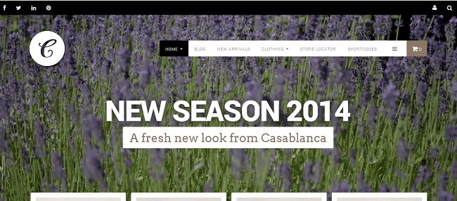 Theme WordPress Responsive WooCommerce - Casablanca