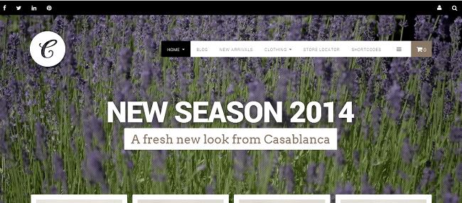 Theme WordPress Responsive WooCommerce - Casablanca