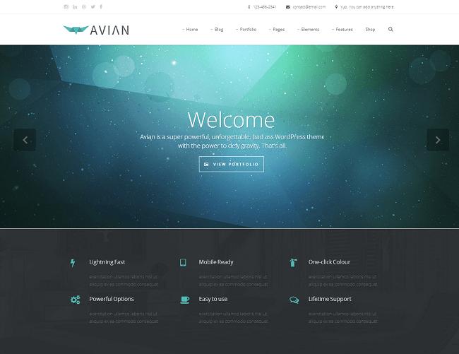Theme WordPress Polyvalent pour Entreprises - Avian