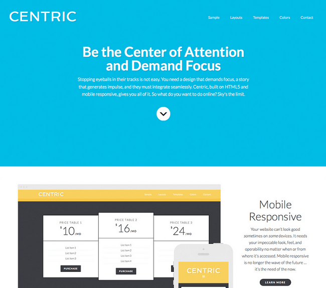 Centric Pro - theme wordpress one page