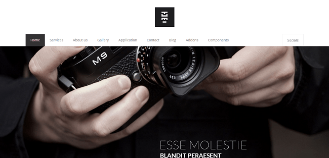 Totemic : Template WordPress Responsive Business