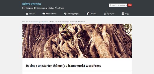 Racine : WordPress Starter Theme Français