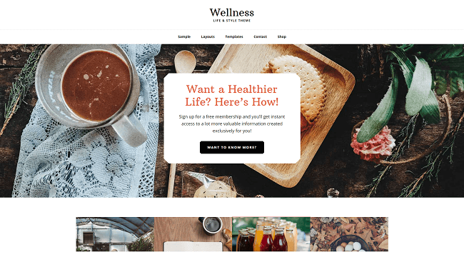 Wellness - Life & Style Theme