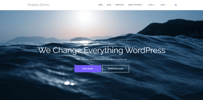Shapely : template wordpress gratuit